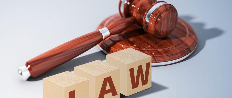 职务违法行为是哪些